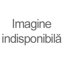 SC ISOCLIMA SRL